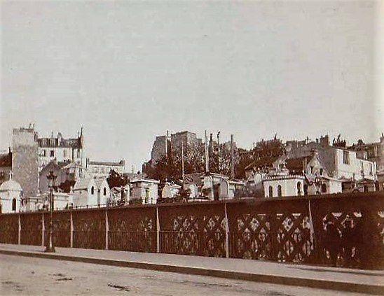 Cimetière Montmartre. Les chats. L'Ecole du Chat.