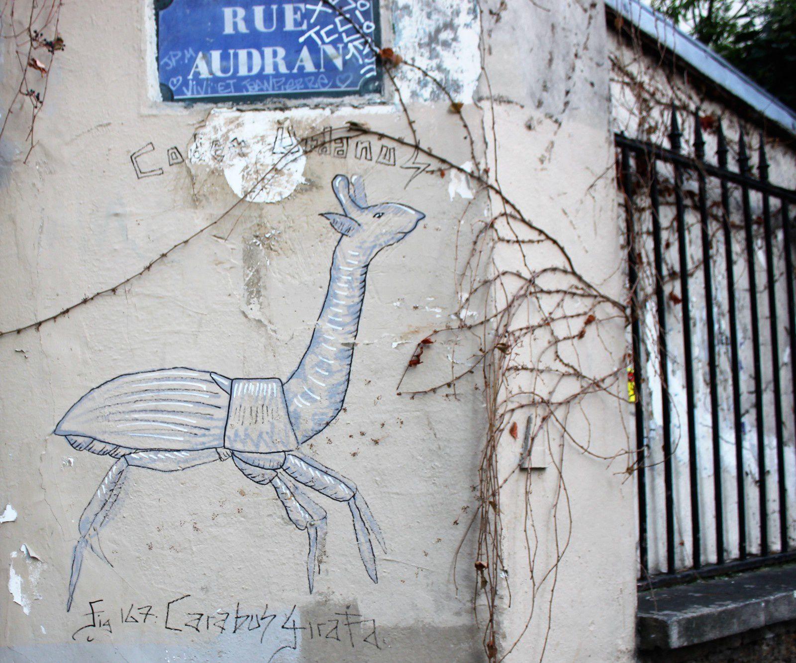 Codex Urbanus. Carabos Girafa. Rue Audran.
