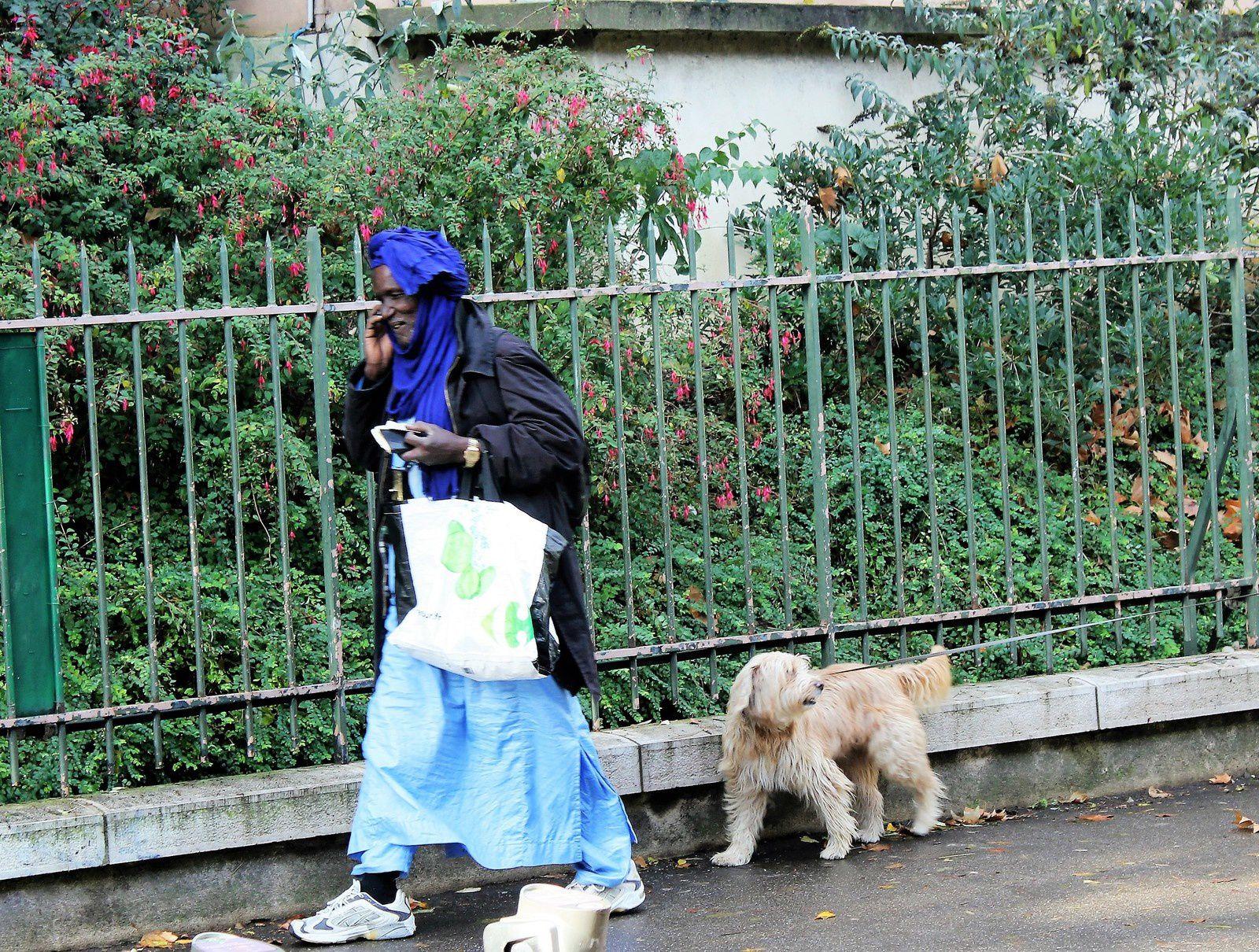 Rue Ronsard.. Un chien ne suit pas toujours son vrai maître!
