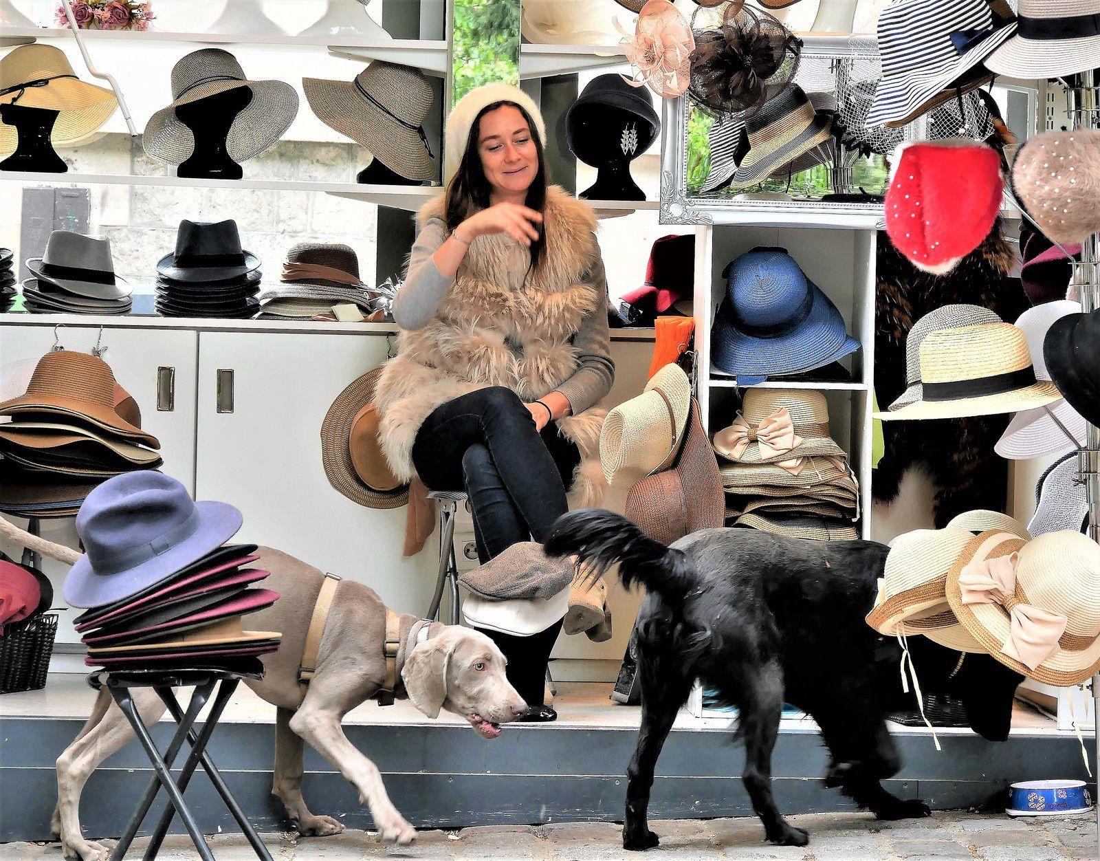 25 avril Miss Charivari marchande de chapeaux et les chiens!