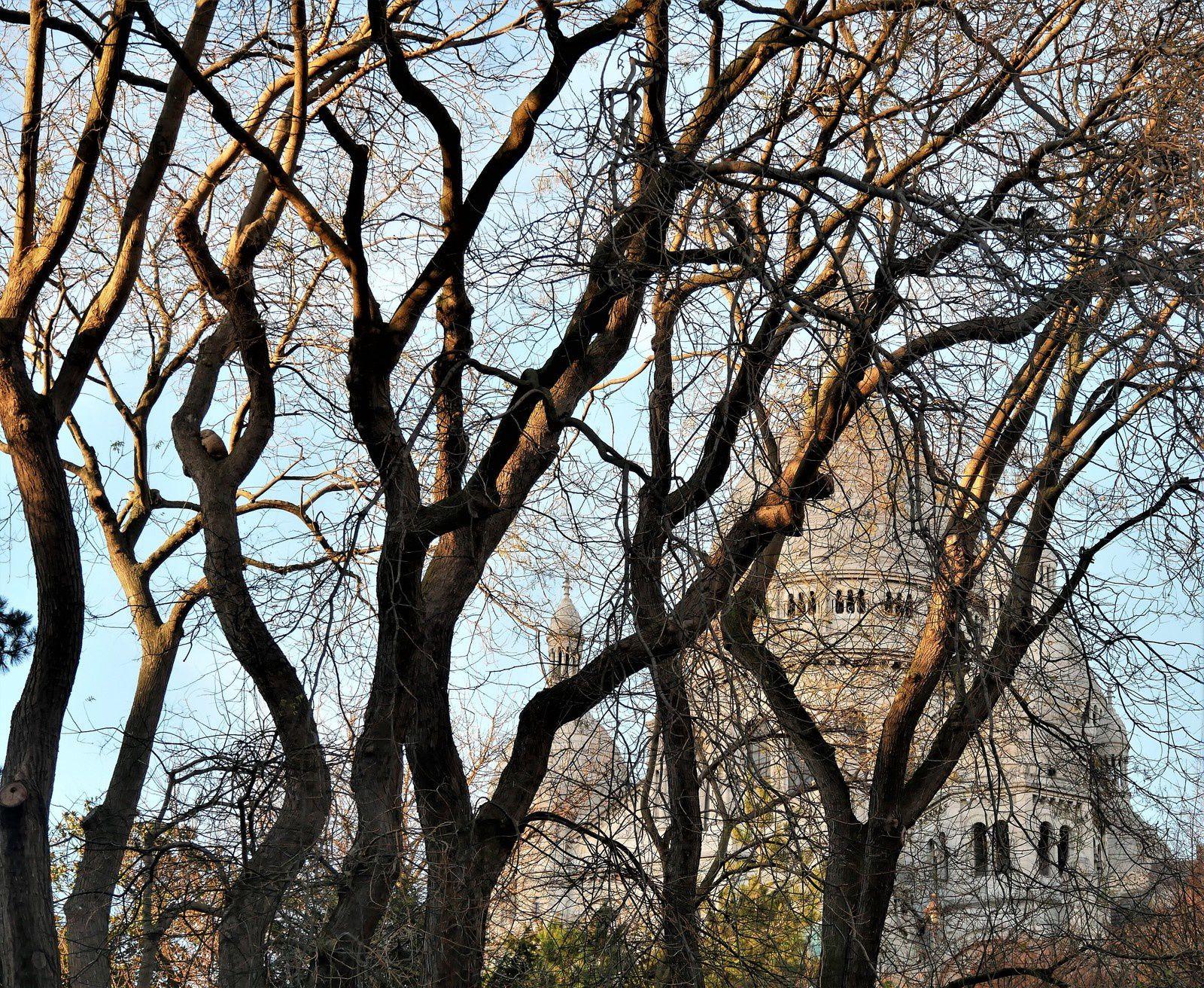 Montmartre. Photos de novembre et décembre 2017 au jour le jour.