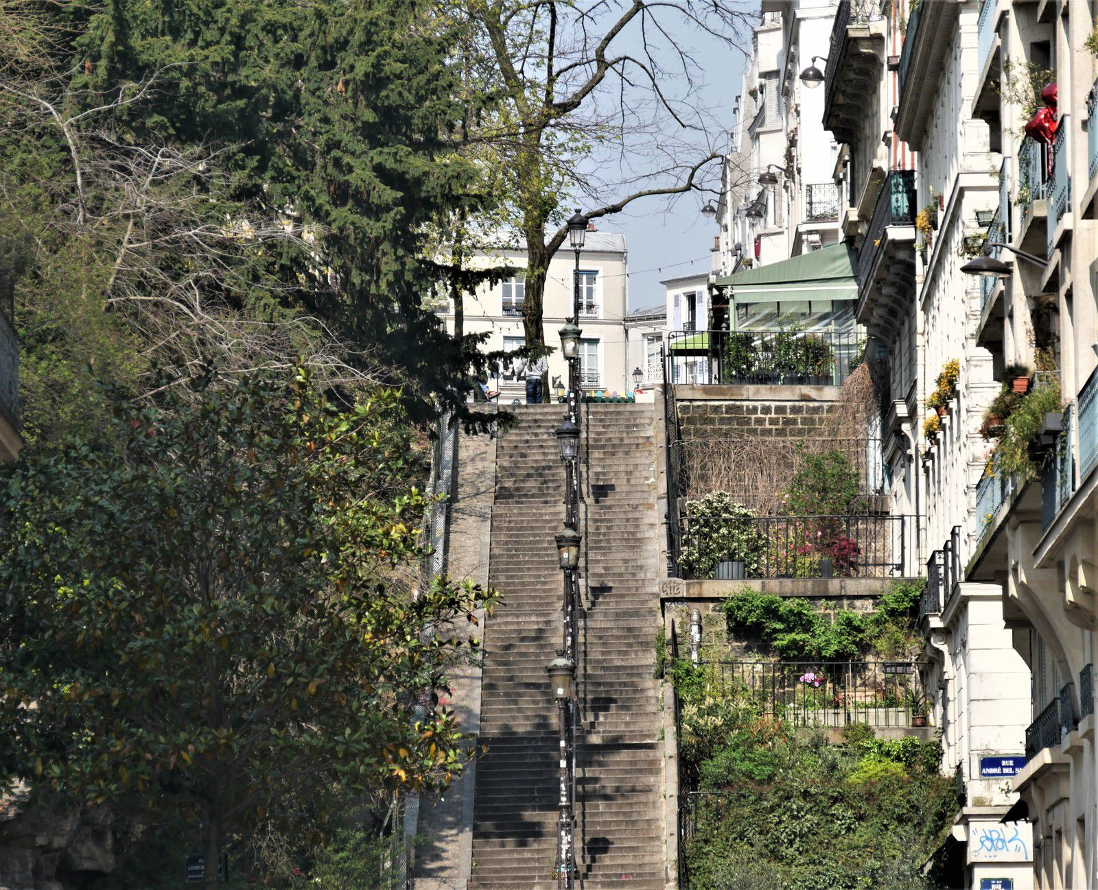 Photos de mars 2020. Montmartre. Album.