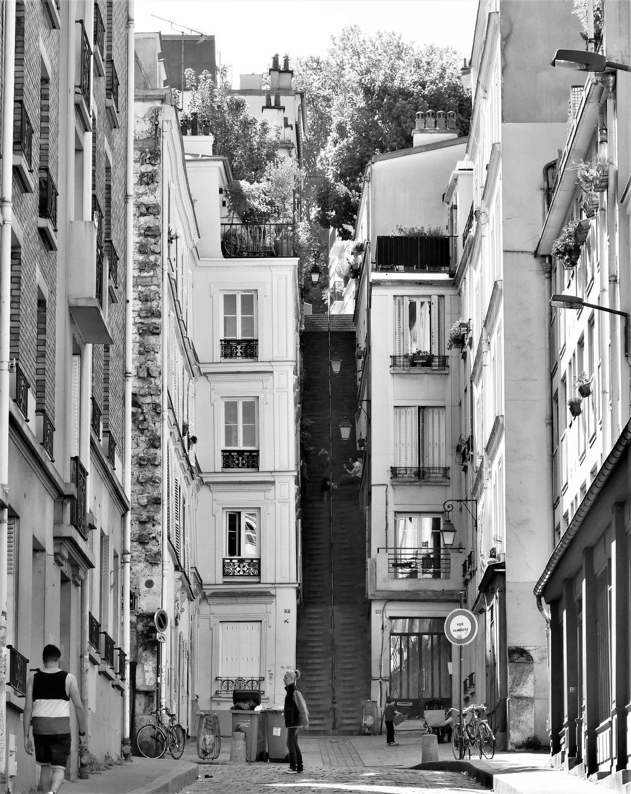 Montmartre. Photos du confinement.  II Du 16 avril au 11 mai.