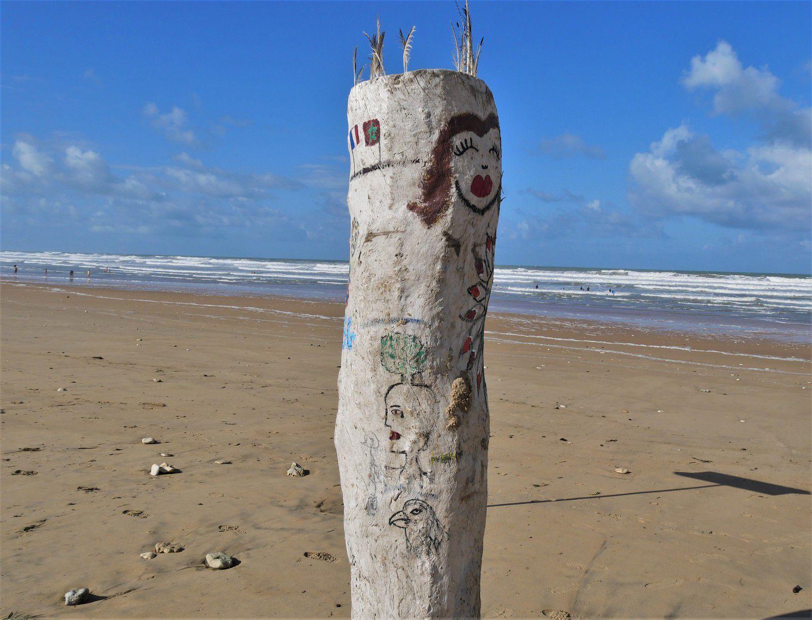L'arbre totem de la plage de Grand-Village. Août 2020.