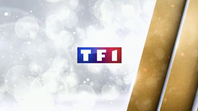 Bilan : 95 des 100 meilleures audiences pour TF1 en 2014
