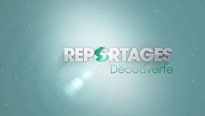 """""""Reportages Découverte"""" (TF1)"""