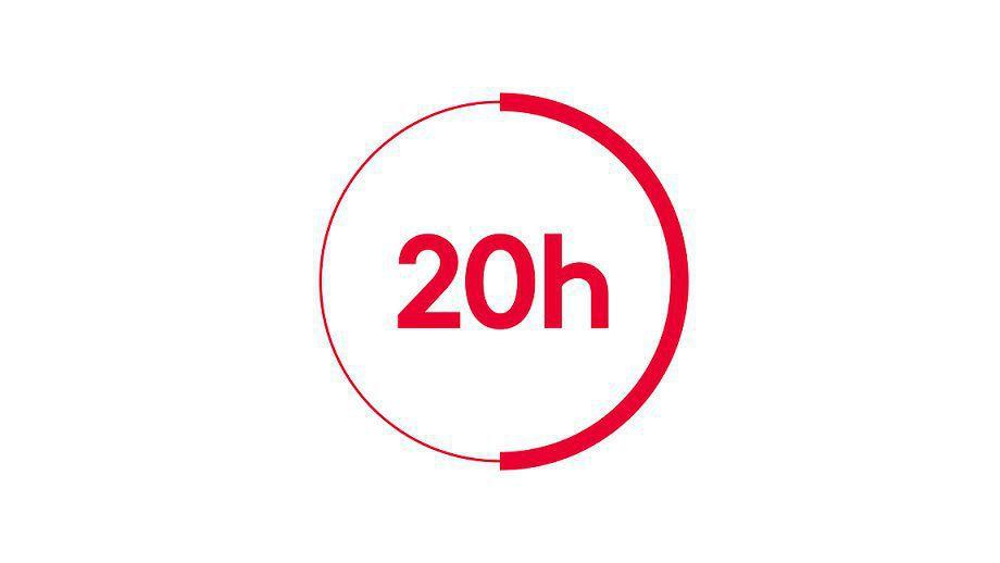 """""""20h France 2"""" (© FTV)"""