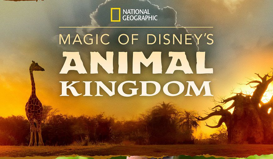 """Au Coeur de Disney's Animal Kingdom"" (© Disney)"