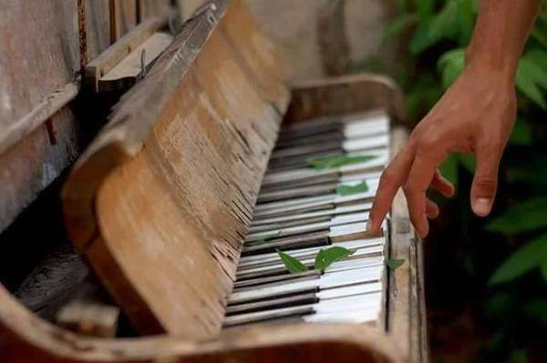 La musique... compagne de vie !