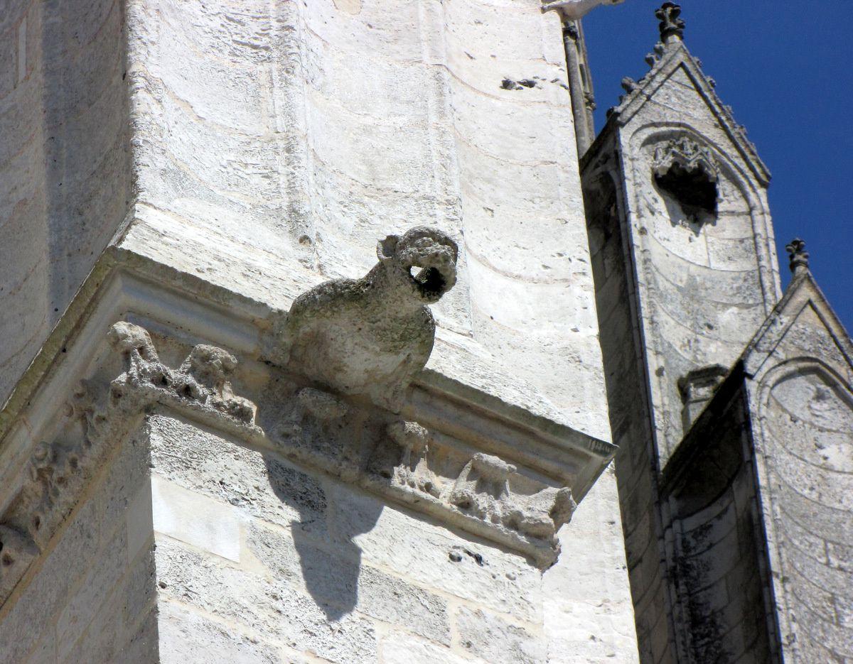 Cathédrale de Beauvais, gargouilles (1/2)