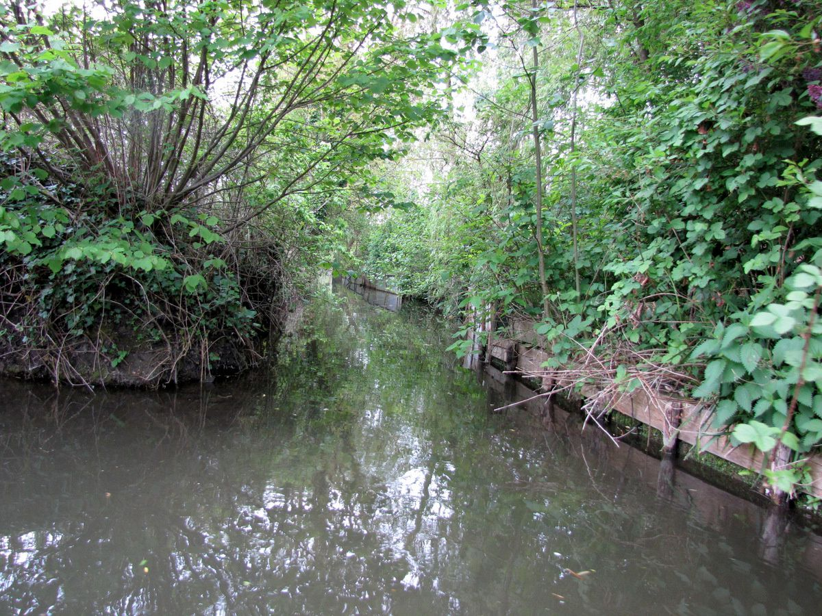 Hortillonnages d'Amiens, petits canaux