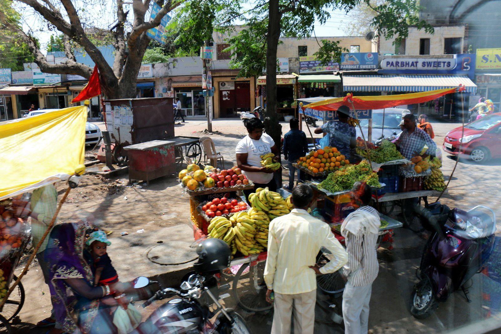 Sur la route entre Delhi et Mandawa, Rajasthan (Inde)