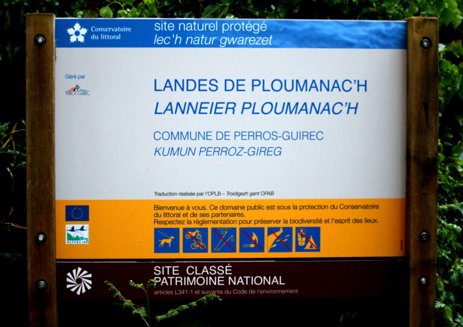 Rochers remarquables des landes de Ploumanac'h (1/2)