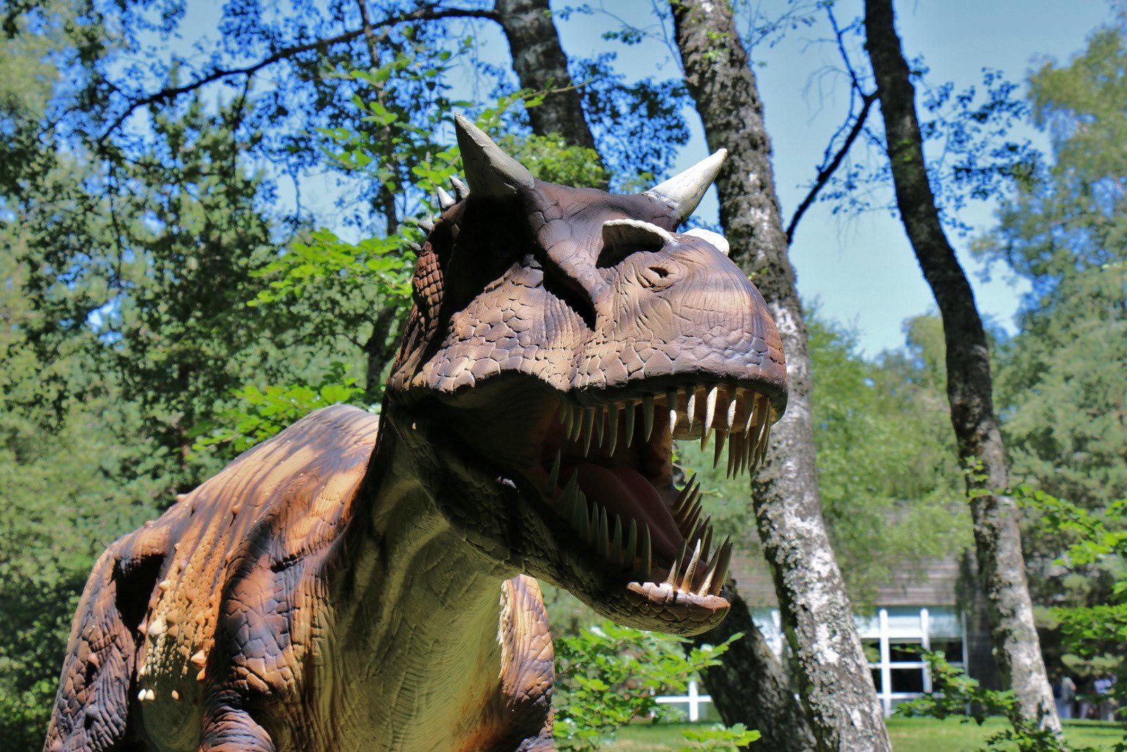 Epanterias juvénile, sur les traces des dinosaures