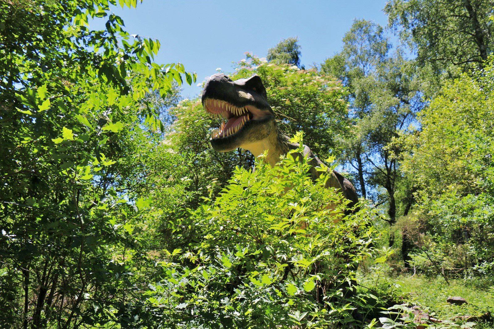 Tyrannosaure, sur les traces des dinosaures