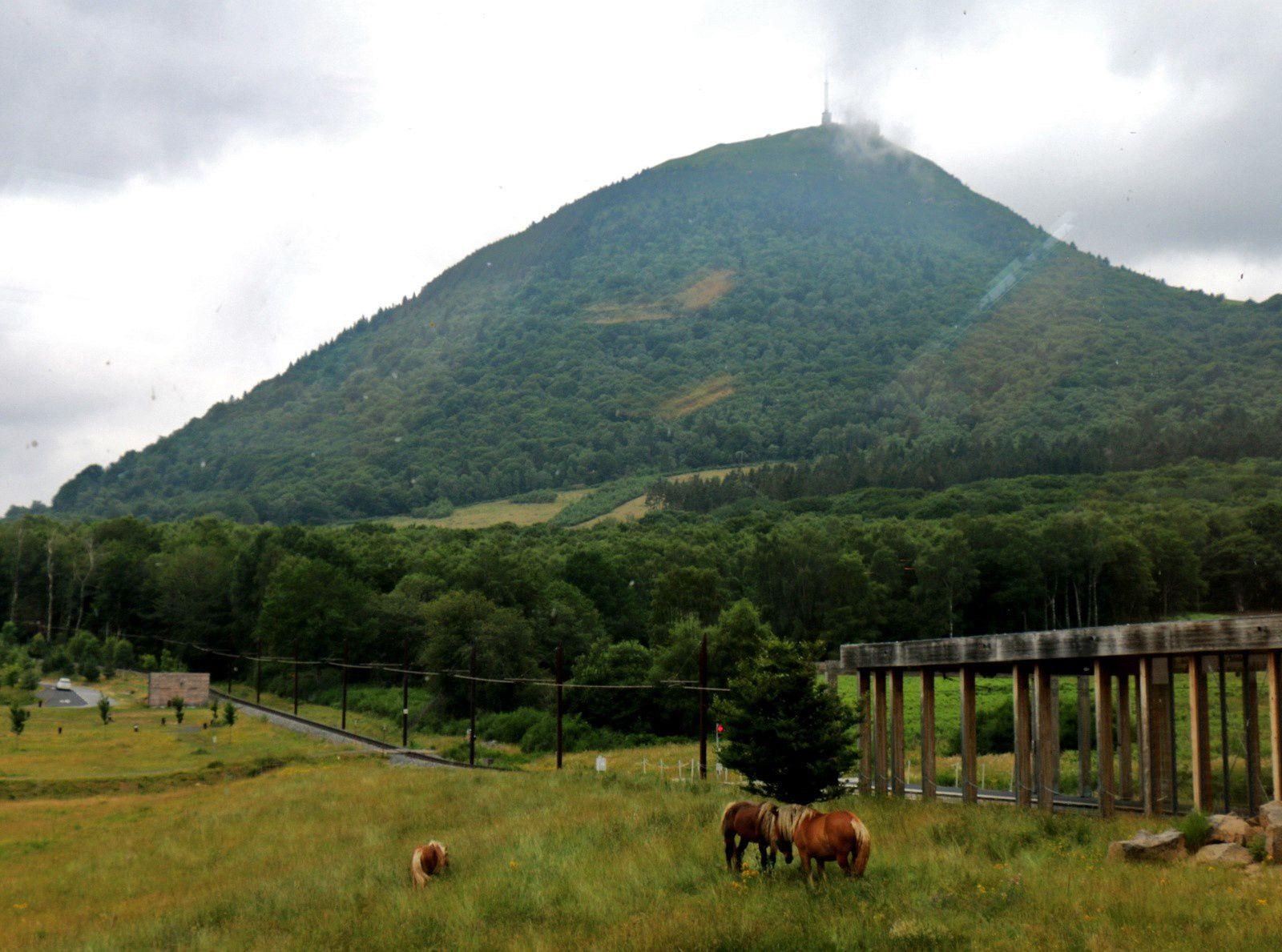 Le Puy-de-Dôme, le train, les parapentistes et les chevaux de race Comtois