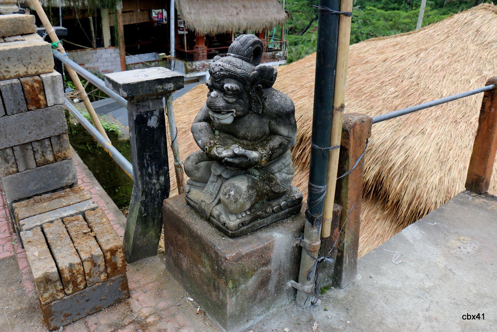 Autour des rizières de Tegalalang près d'Ubud, Bali Indonésie