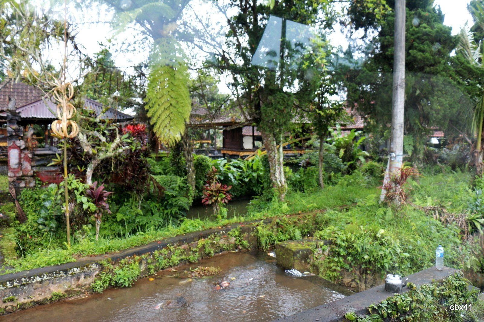 Villa Puri Candikuning (Bali), la piscine