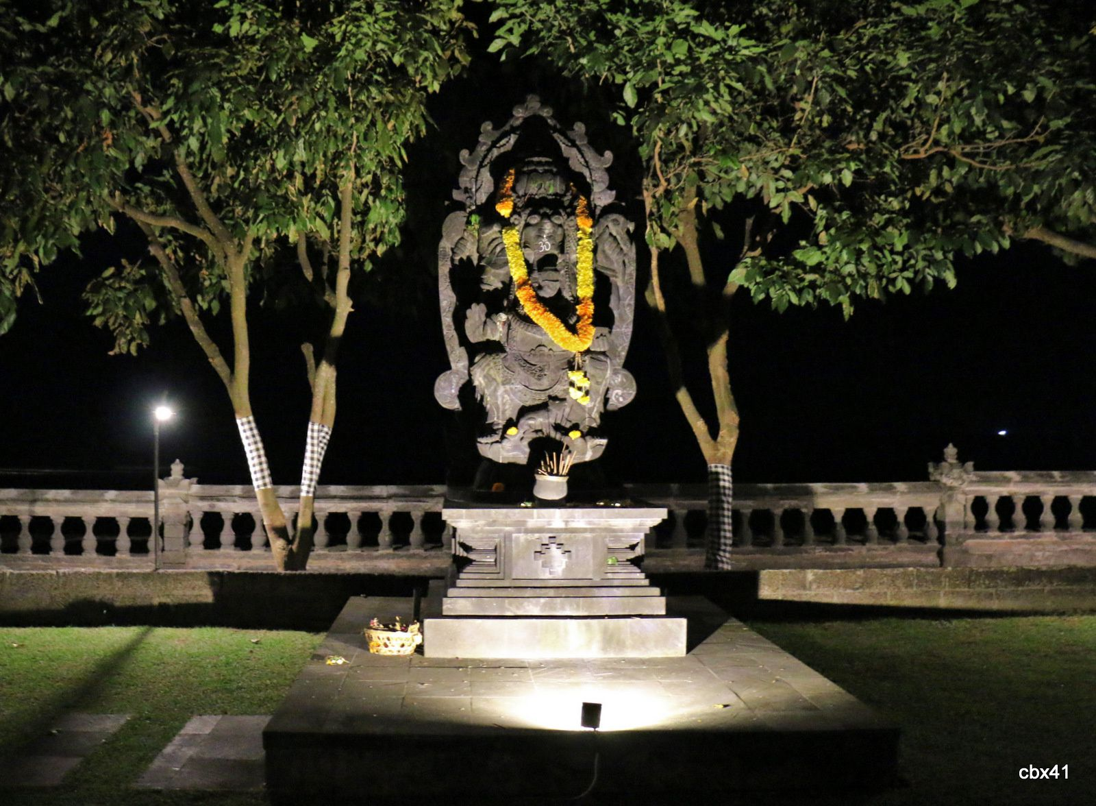Hôtel Aditya Lovina Bali, plantes  épiphytes, dieux et démons