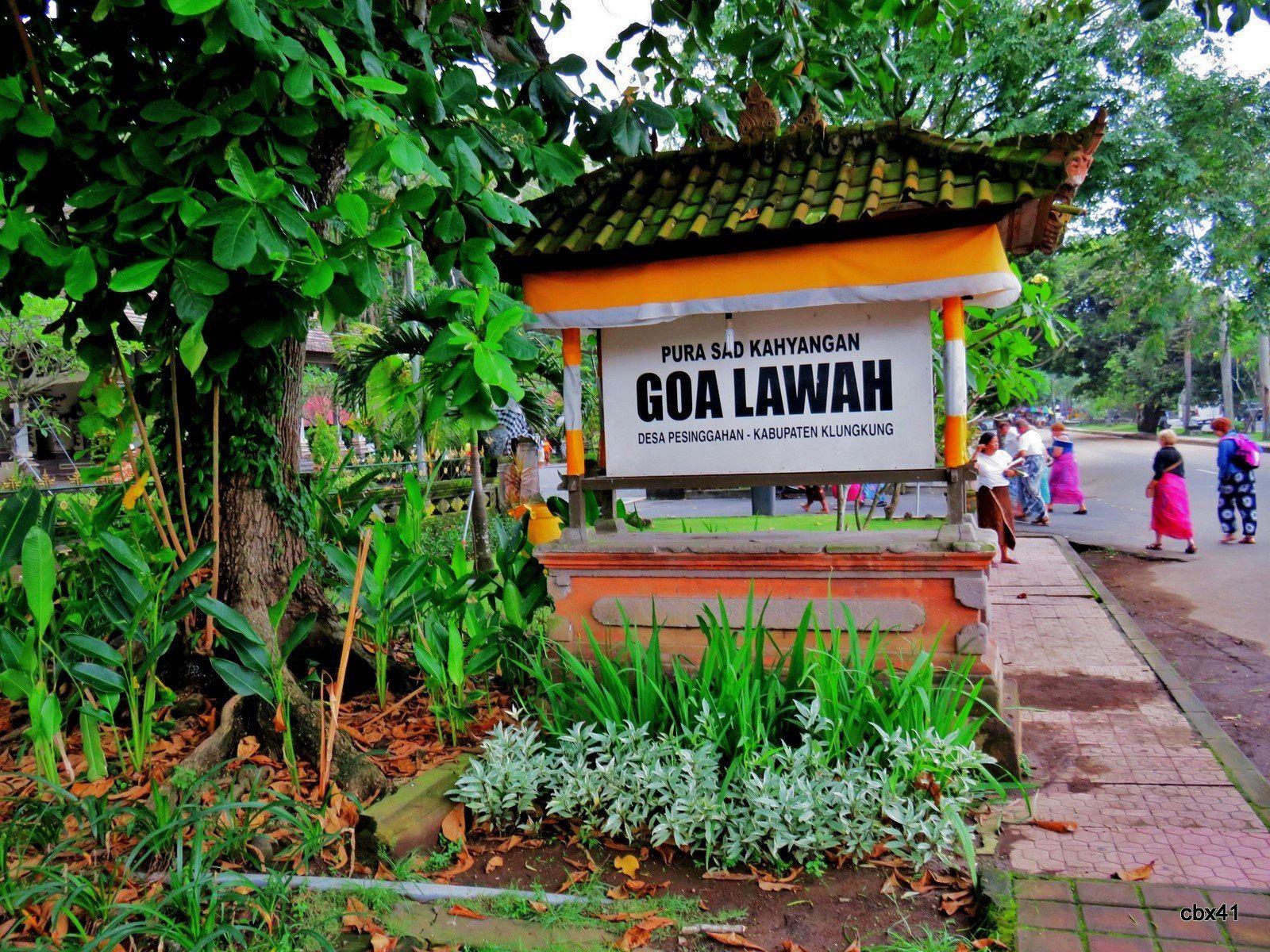 Goa Lawah ( grotte aux chauve souris ), porte aux lions (Bali)