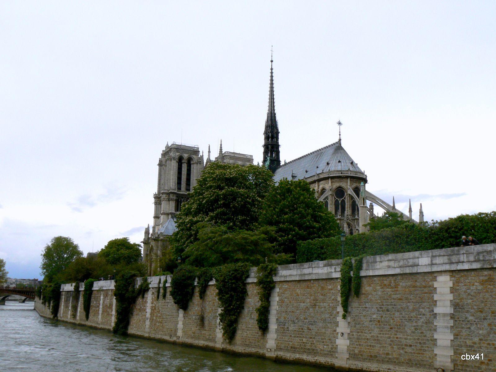 La cathédrale Notre-Dame de Paris a brûlé