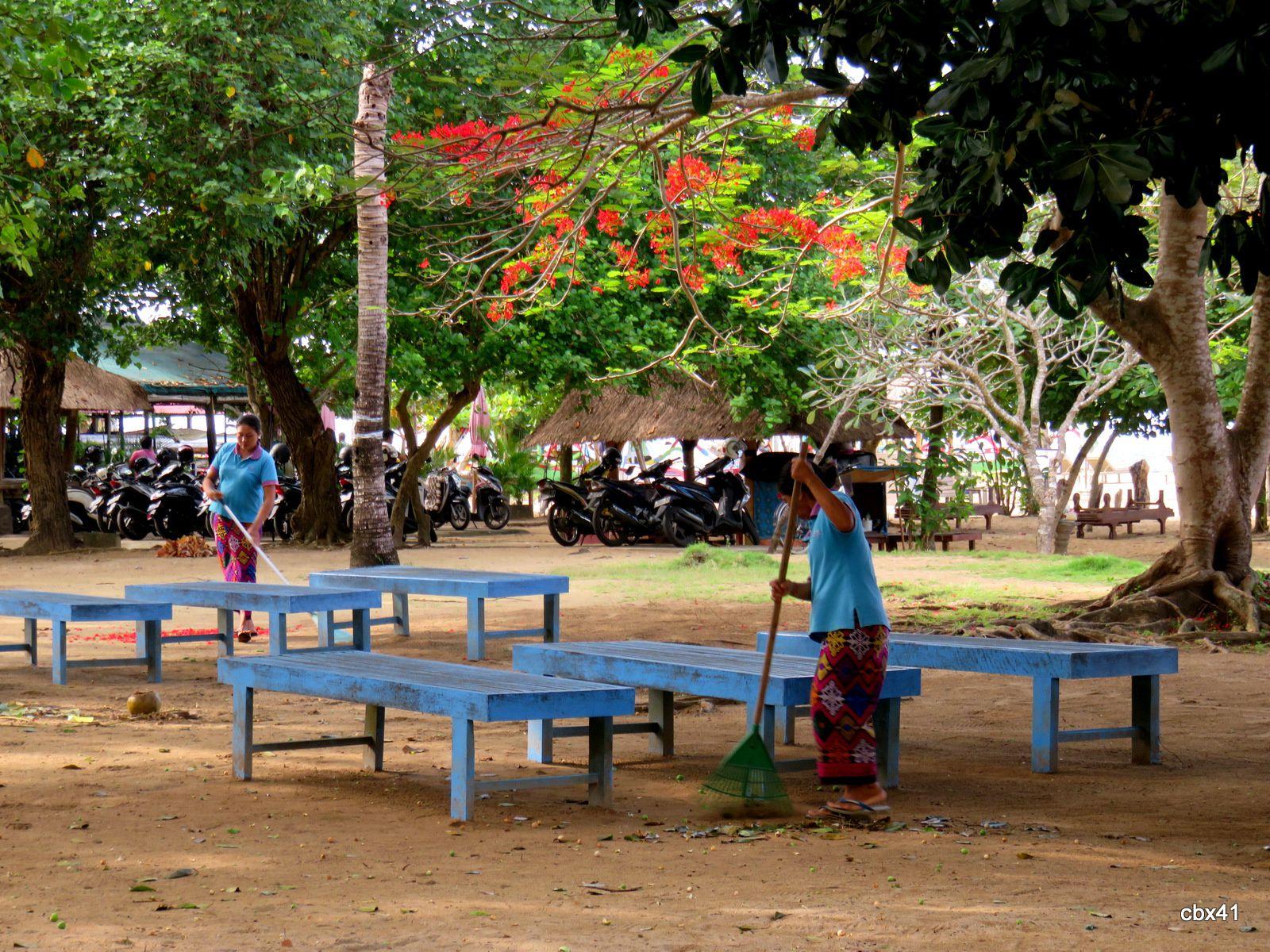 Espaces verts,  plage de Sanur, Denpasar (Bali)