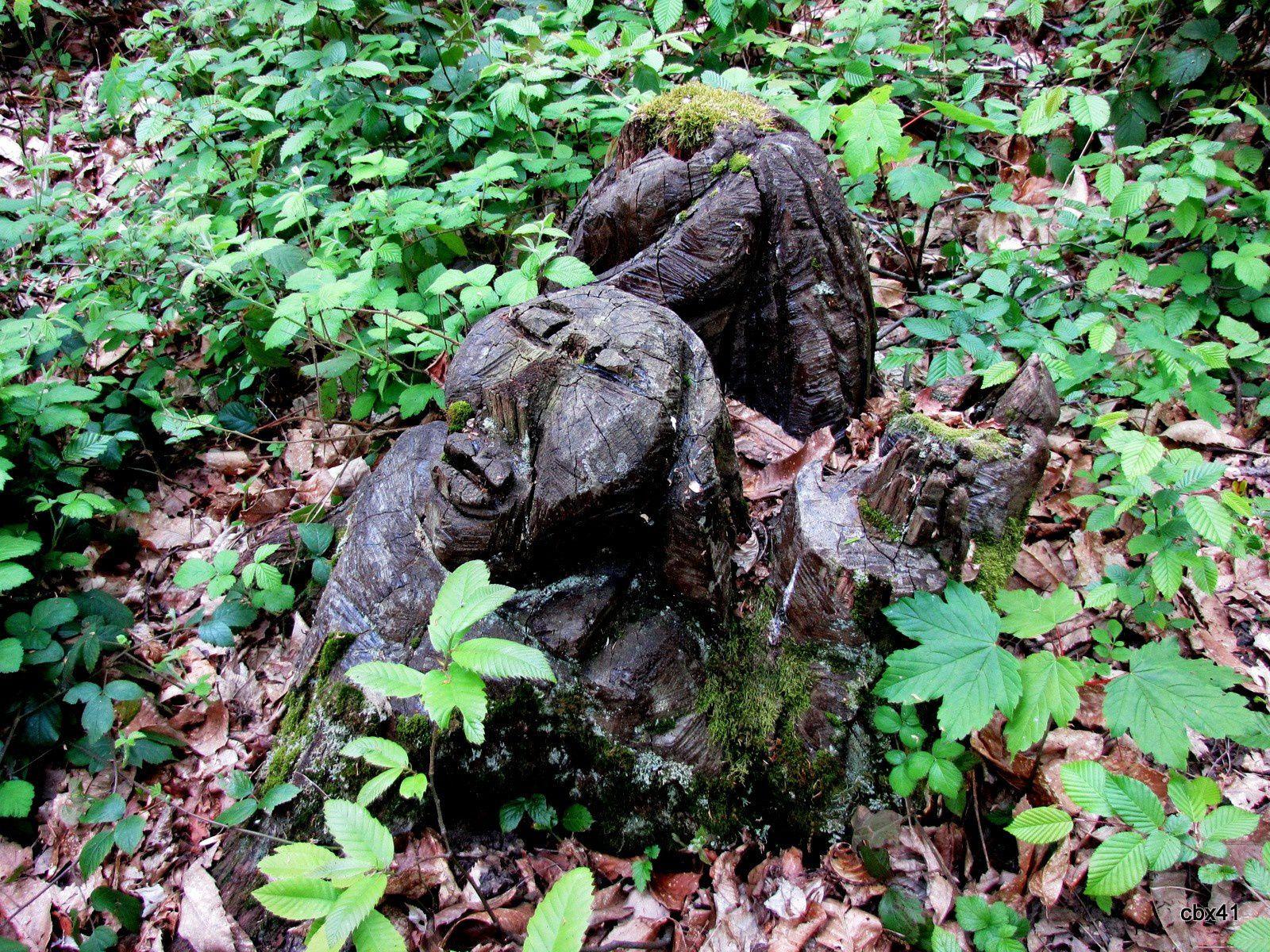 Souche sculptée (visage) dans le parc de Marly