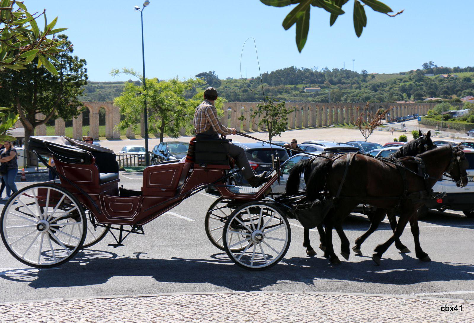 Óbidos (Portugal) et ses calèches