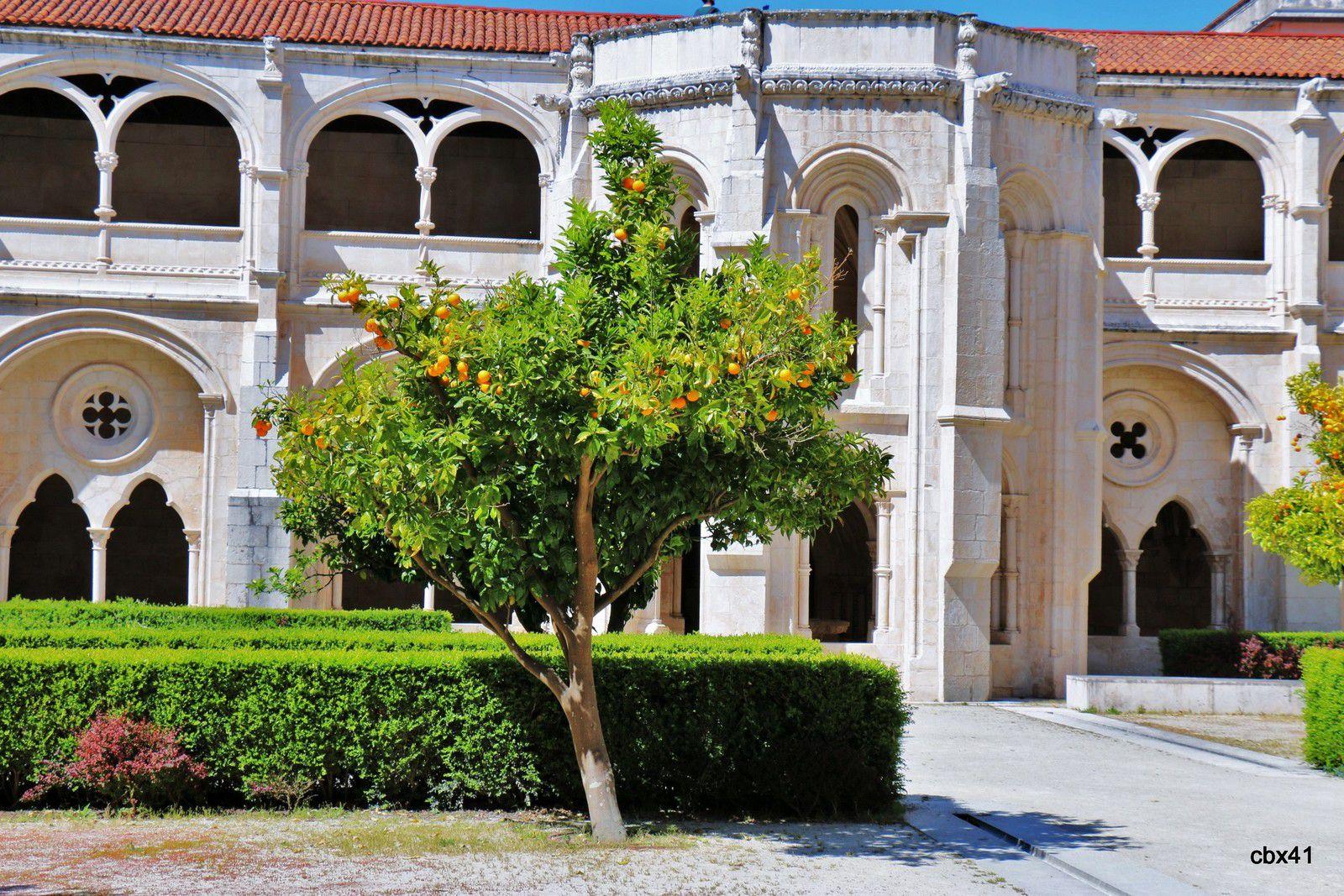 Le Jardin du cloître du silence ou du roi Dinis, monastère d'Alcobaça (Portugal)
