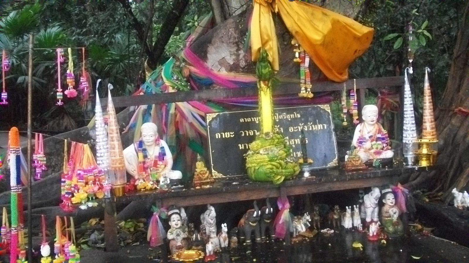 Thaïlande : WAT KAM CHANOT SUITE