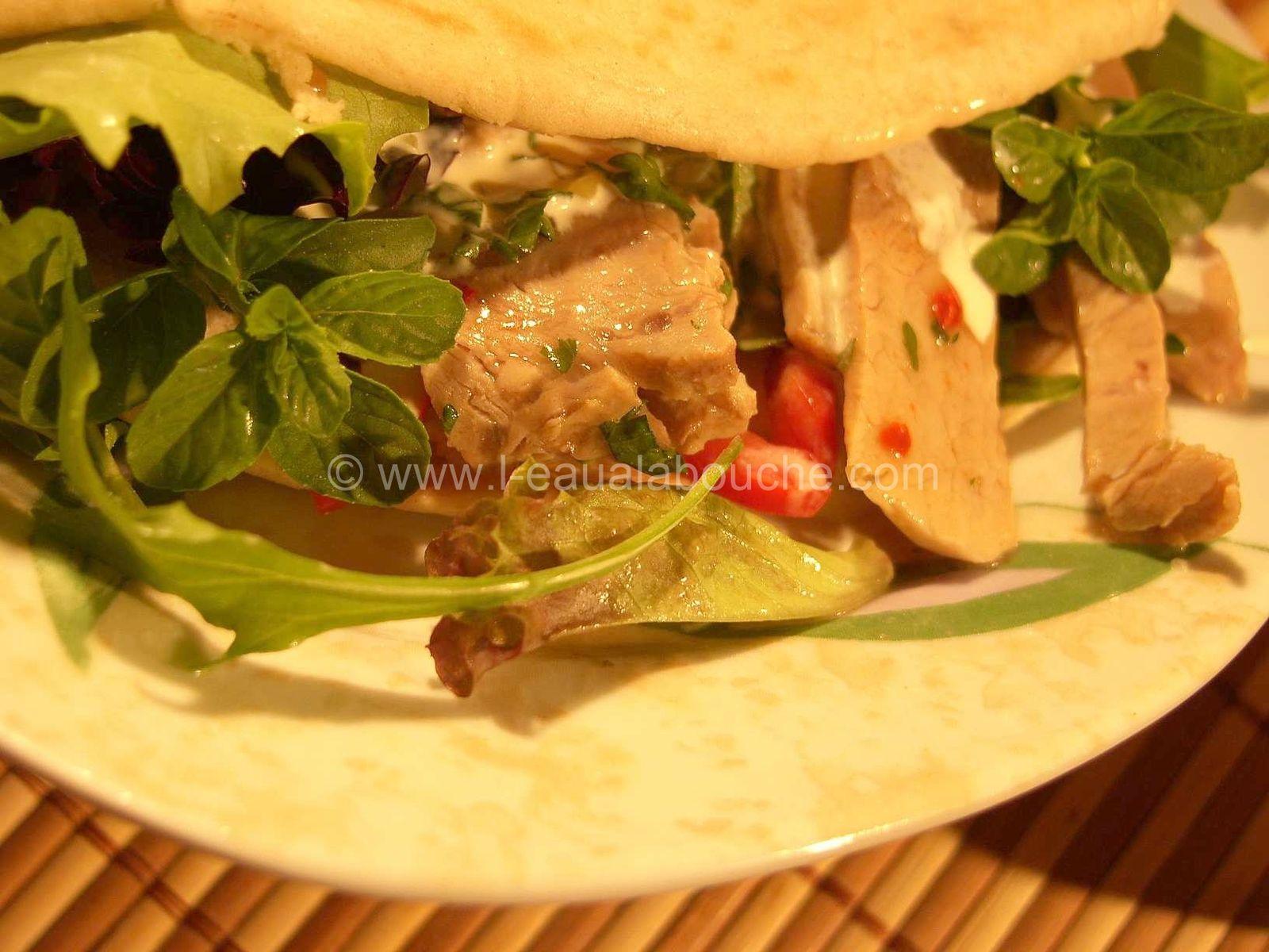 Kebab à la Dinde