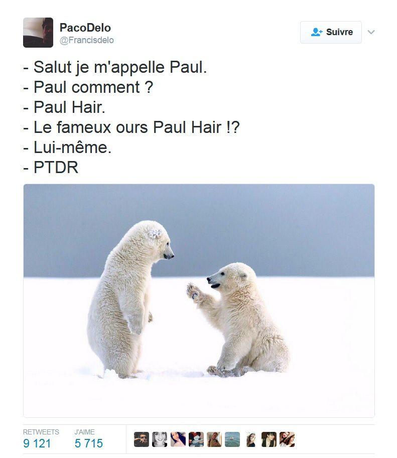 Paul Hair