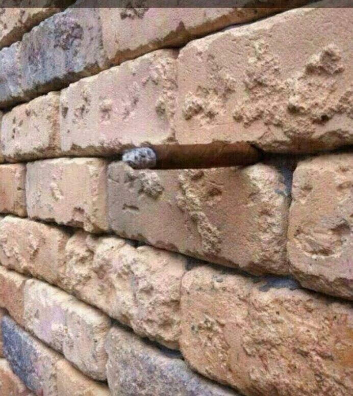 Illusion d'optique : le mur