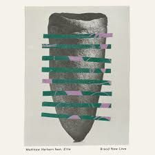 Matthew Herbert Ft. Zilla - Brand New Love