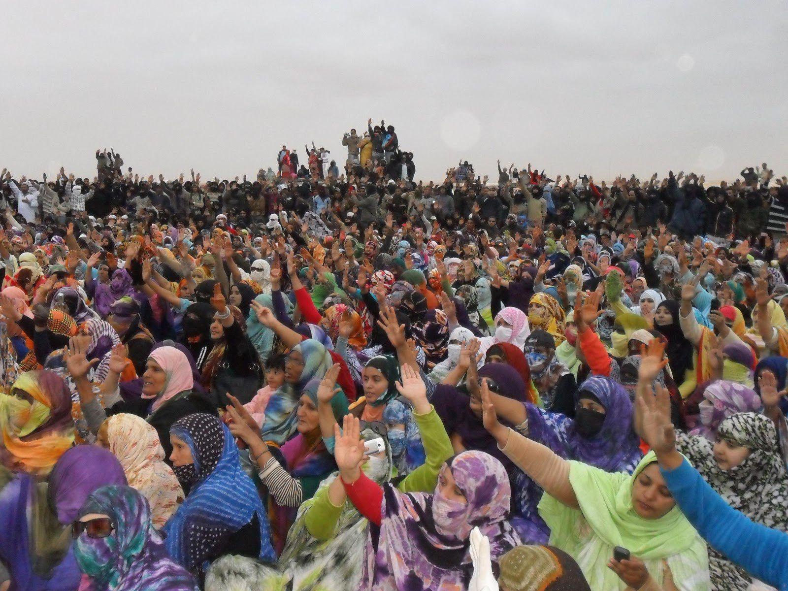 L'historique camp de protestation sahraouie de Gdeim Izik en 2010. Photo DR