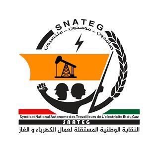 Le Snateg lance sa campagne : « ensemble pour payer moins chère la facture d'électricité » sur facebook