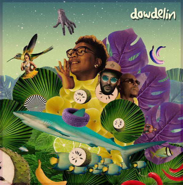 #Musique - Découvrez Dowdelin nouveau clip Elephants Roses !