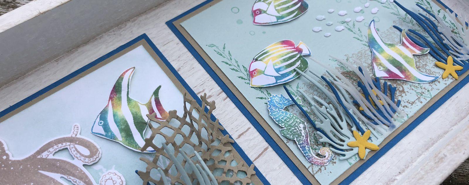 Un projet sur le thème de la mer, des tropiques....
