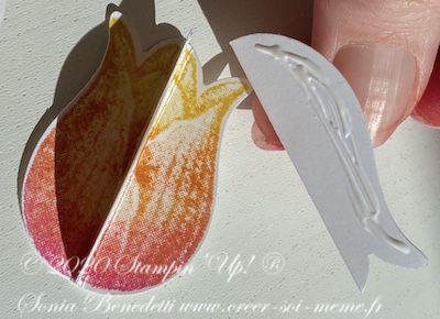 collage des tulipes pour un effet 3d
