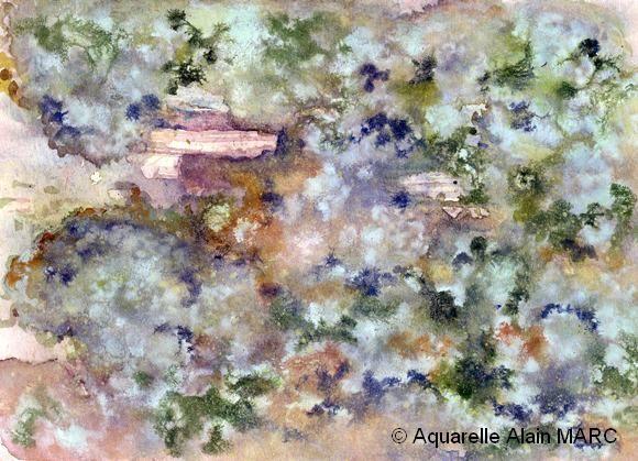 «Le cosmos des lichens» Alain MARC, Aquarelle 18 x 28 cm