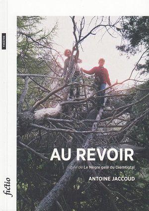 Au revoir, suivi de, Le Nègre gelé du Diemtigtal, d'Antoine Jaccoud