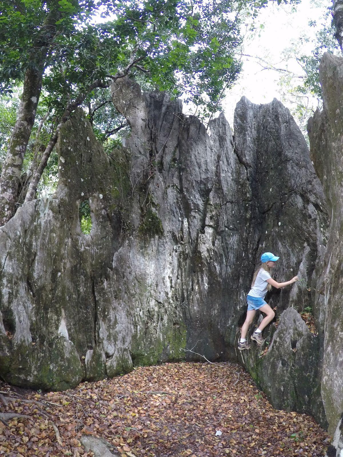 Randonnée aux roches ~ Koumac ~ Nouvelle Calédonie