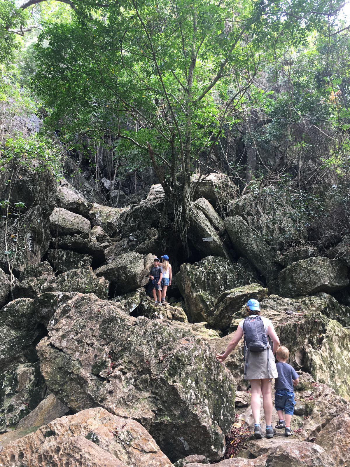 Grottes de Koumac ~ Nouvelle Calédonie