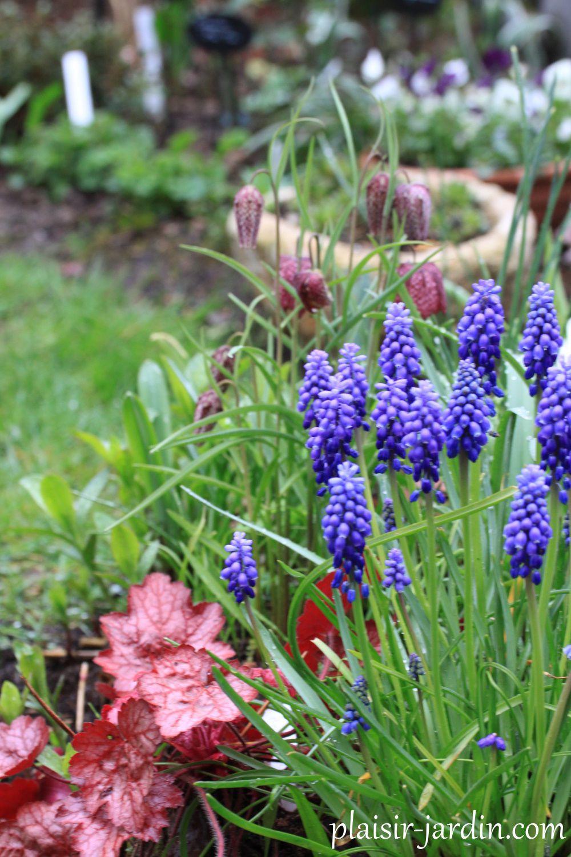 Visite d'un jardin étincellant