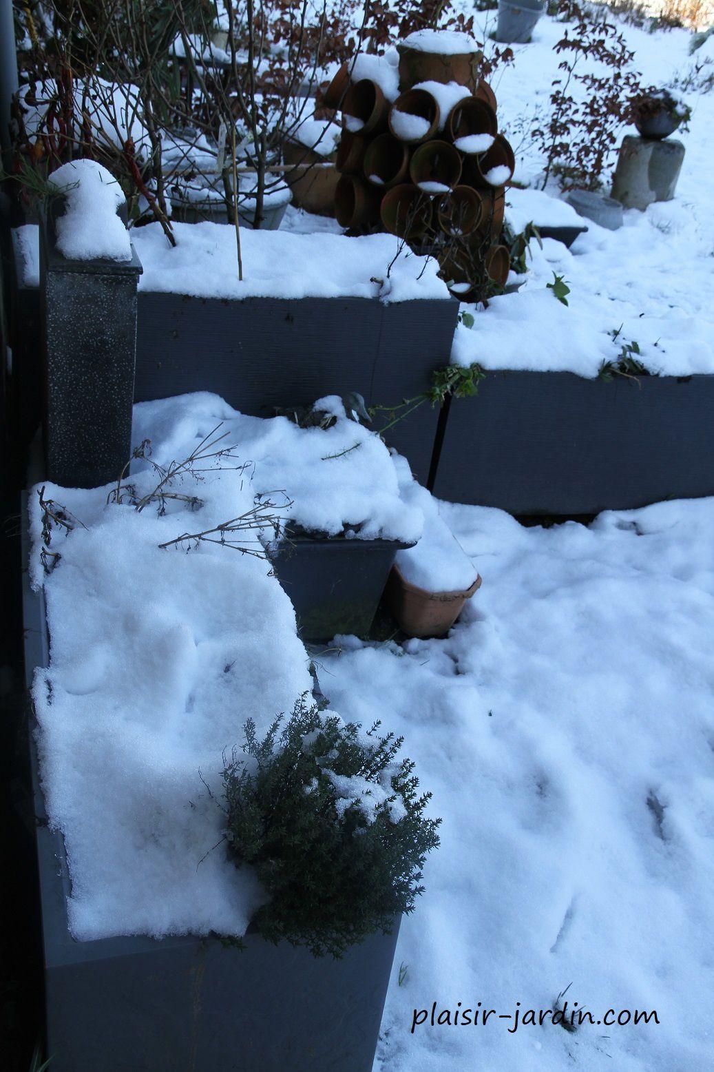 Que faire lorsqu'il a neigé au jardin ? (avec vidéo)