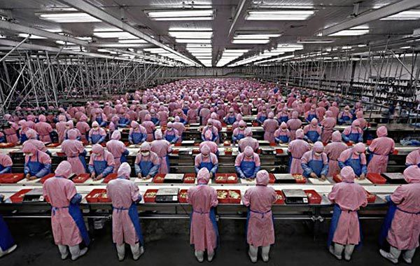 Atelier de construction des Iphones à l'entreprise Foxconn en Chine. Ces esclaves seront bientôt remplacées par des robots.