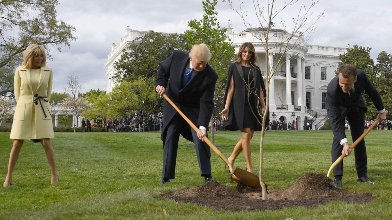 Trump et Macron plantent un chêne originaire de l'Aisne sensé symboliser l'amitié entre les USA et la France. Le chêne, aujourd'hui, est mort...