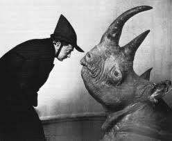 Rhinoceros De Ionesco Avec Les 3ee Cosmopolis