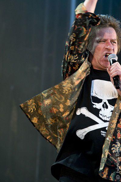 Hubert Félix Thiefaine, au festival Aux Zarbs 2008 (Auxerre, France).