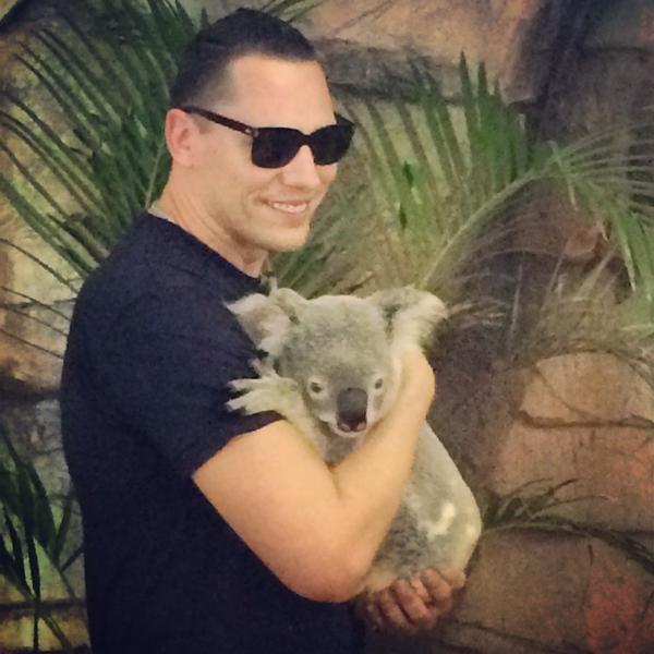 Tiësto photos at Zoo Brisbane, Australia - december 06, 2014